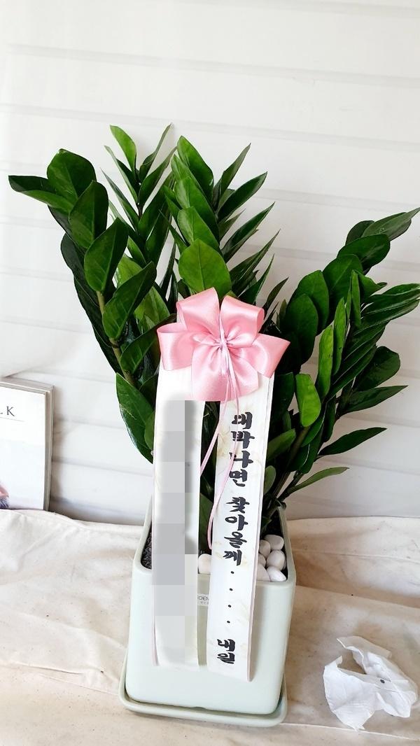 주문자 성ㅇㅇ 경기 김포시로 배송된 상품입니다
