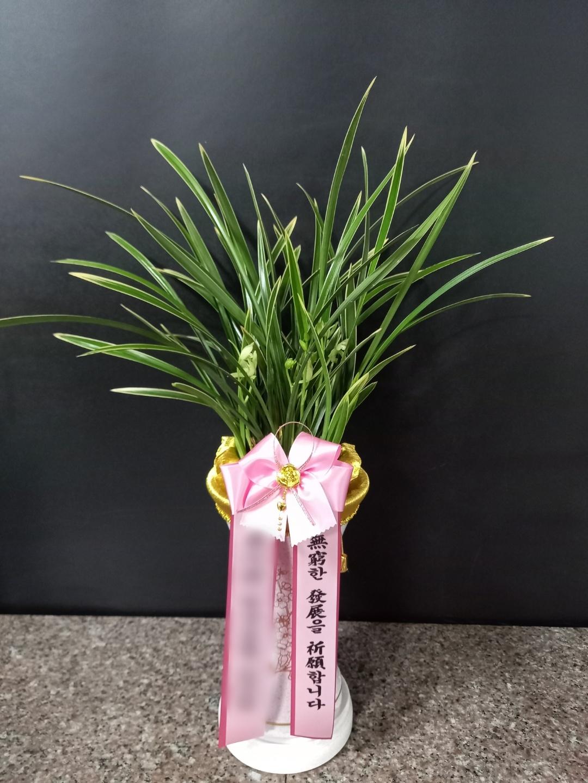 주문자 박ㅇㅇ 서울 동대문구 배송된 상품사진입니다