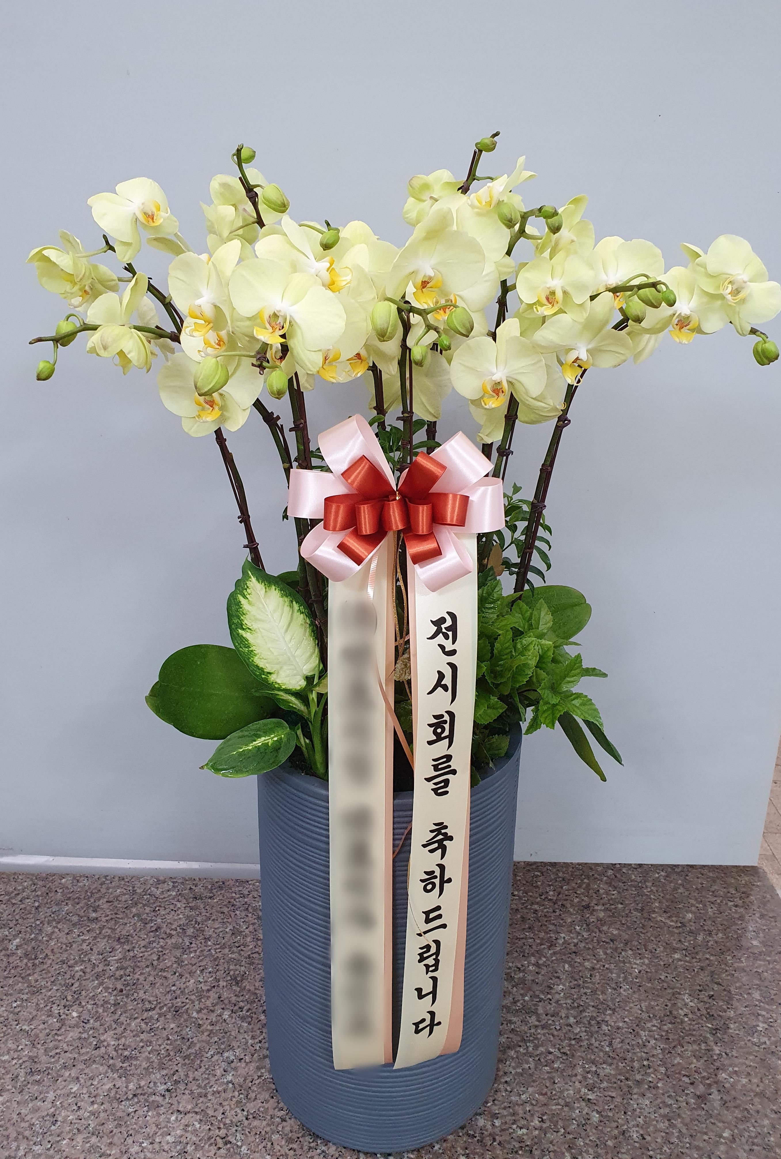 주문자 (주)인ㅇㅇ 경기 성남으로 배송된 상품사진입니다
