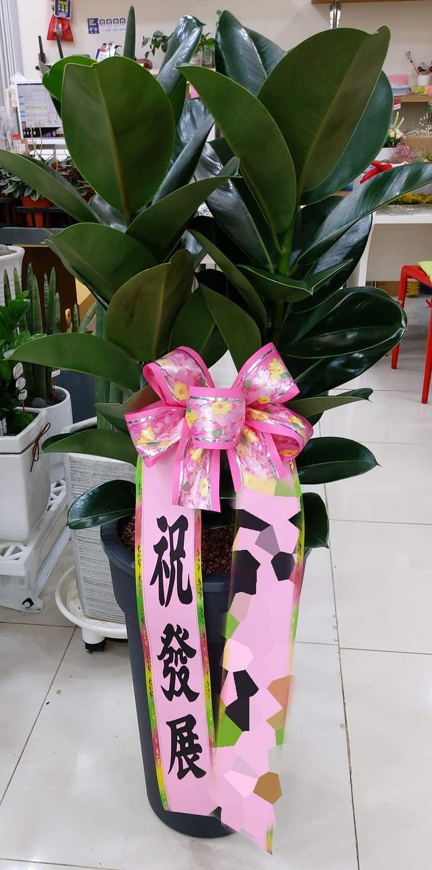 경남김해 김00주문자 로 배송된 상품사진입니다