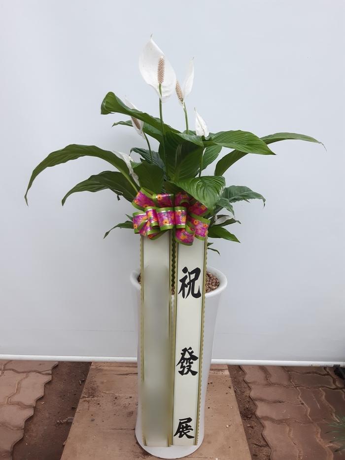 주문자 (주)미ㅇㅇ 서울 강남으로 배송된 상품사진입니다